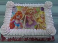 resim baskılı sipariş pastalar